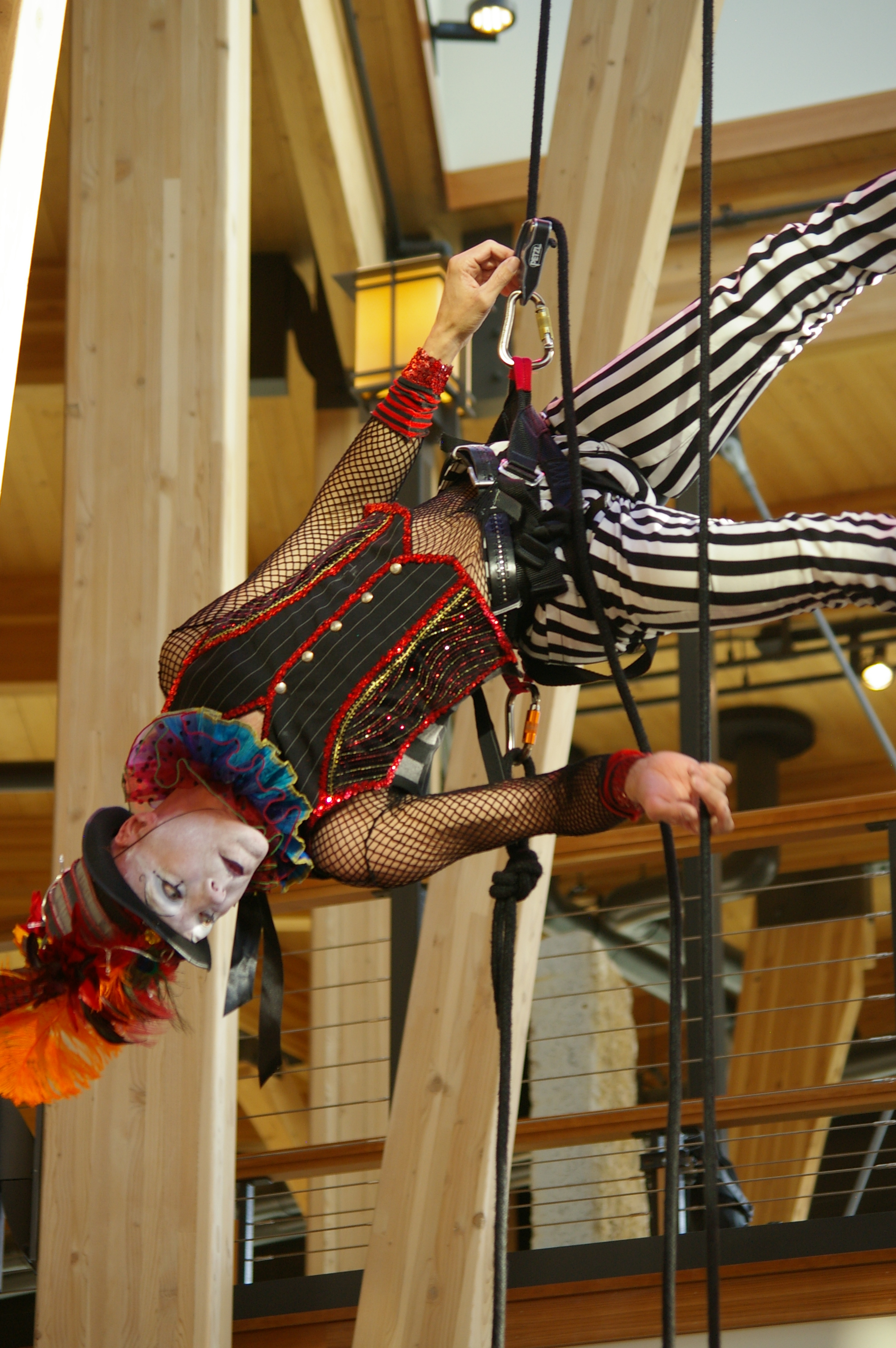 Cycropia Arial Dance performers grace the rafters of the new building.